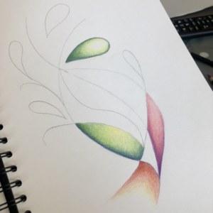 colour 4