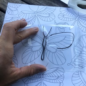 Tracing butterflies with black marke