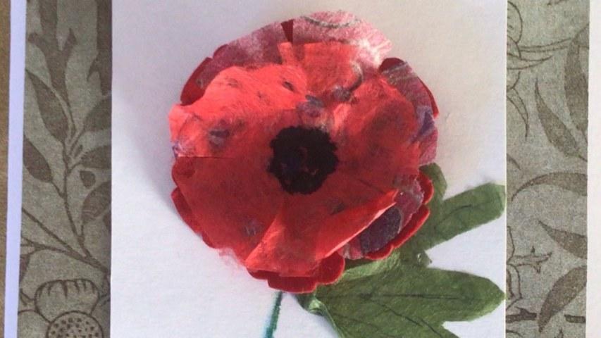 Poppy-Card-2_2560x1440_acf_cropped